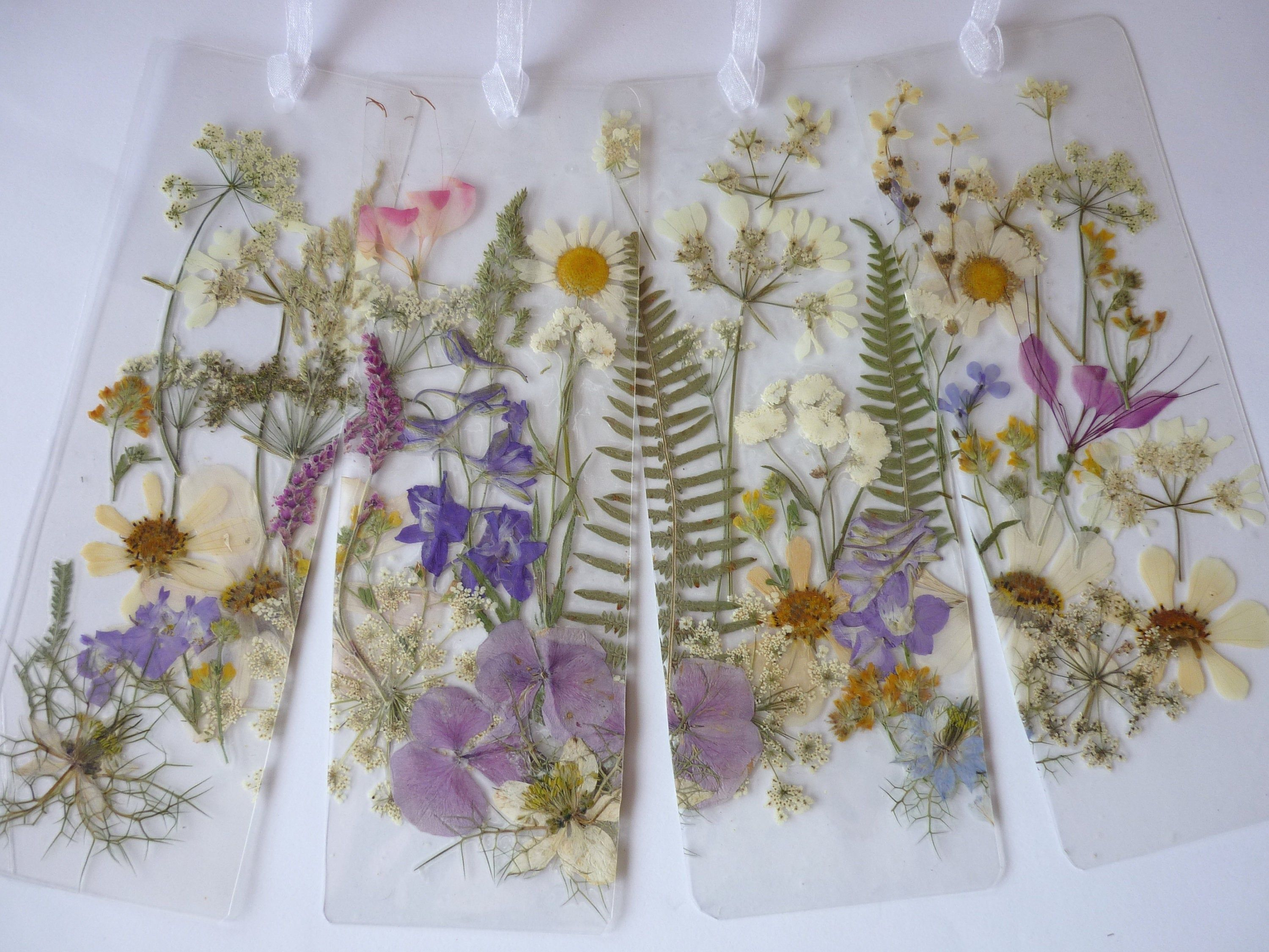 Pressed Flowers Set Natural Dried Real Floral Plant DIY Craft Gift Decoration