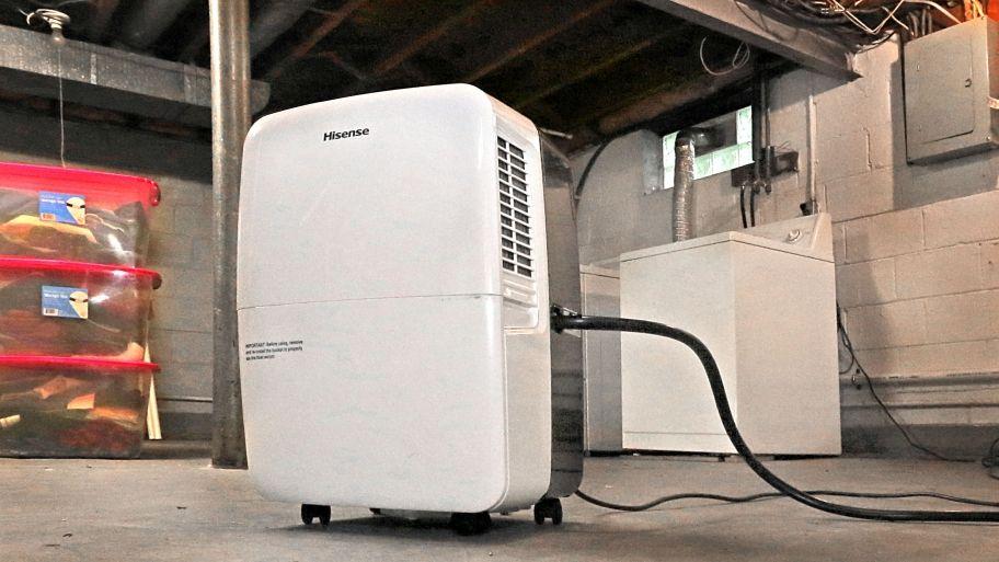 How to choose a basement dehumidifier basements dehumidifiers