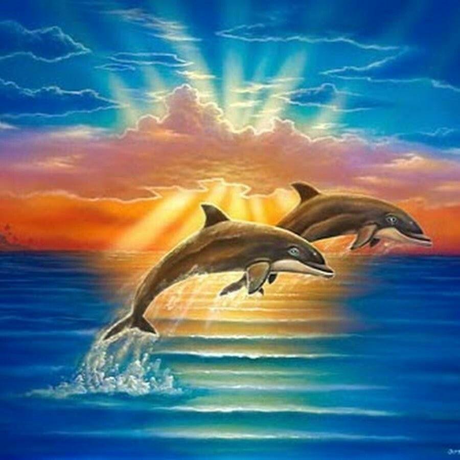dolphins tiere in acryl pinterest unterwasserwelt. Black Bedroom Furniture Sets. Home Design Ideas