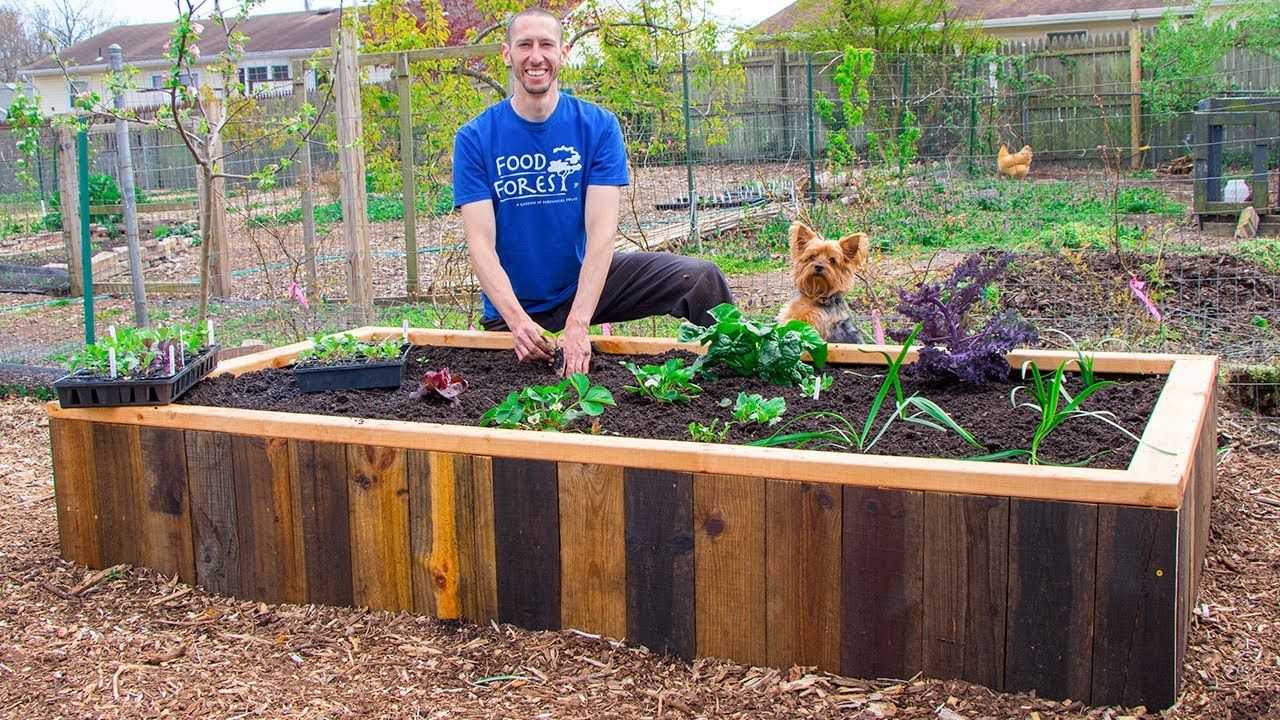 How to Build a RAISED BED Using PALLETS, FREE Backyard ...