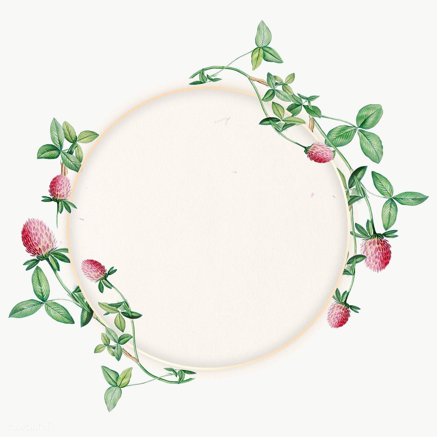 Download Premium Png Of Round Clover Flower Frame Transparent Png 2090916 In 2020 Flower Frame Flower Frame Png Clover Flower