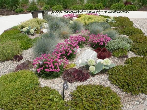 Un H2O Garden - Kelowna's demonstration xeriscape garden   Gardens Xeric Garden Designs Html on