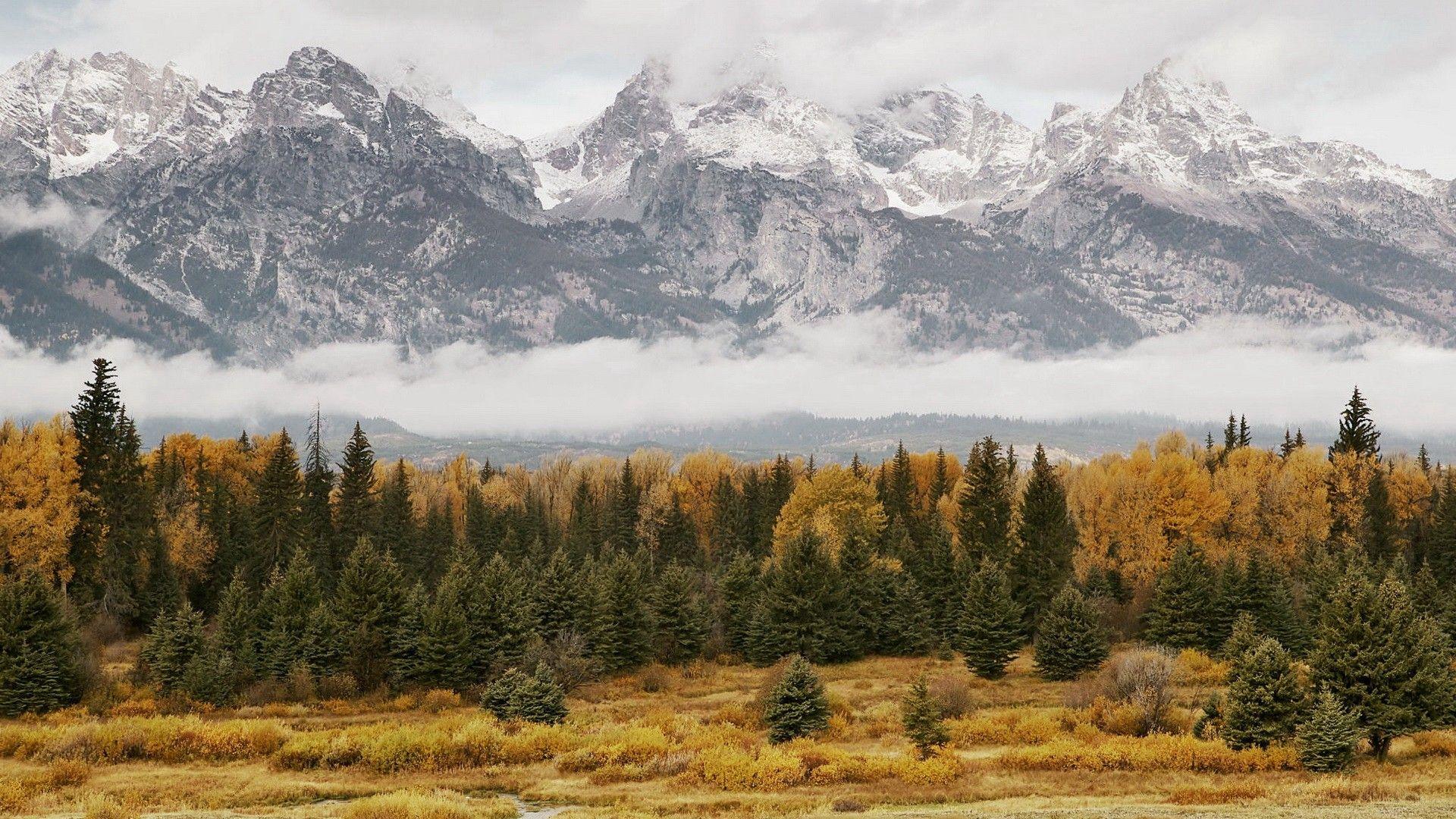 Fond Ecran Foret Montagne Automne Mountain Forest Wallpaper Hd Gratuit Telecharger Free Paysage Foret Foret Fond Ecran Paysage