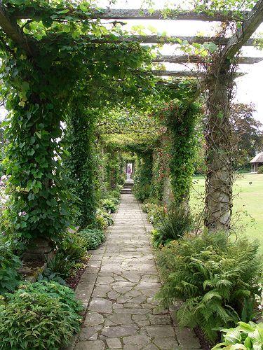 covered garden walkway Pergola   Front and Back house   Covered pergola, Pergola