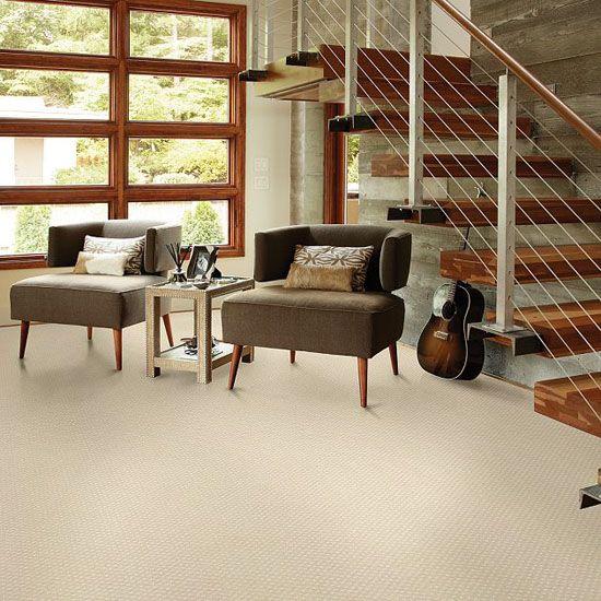 Inspirational Cheap Basement Carpet