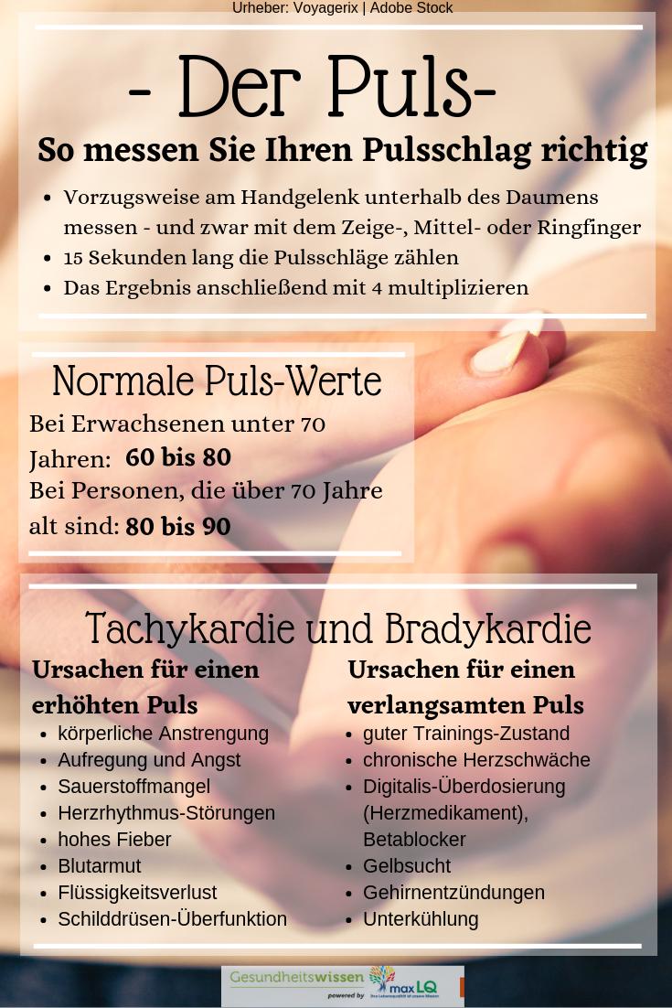 Der Puls: Die richtige Messung, normale Werte sowie..
