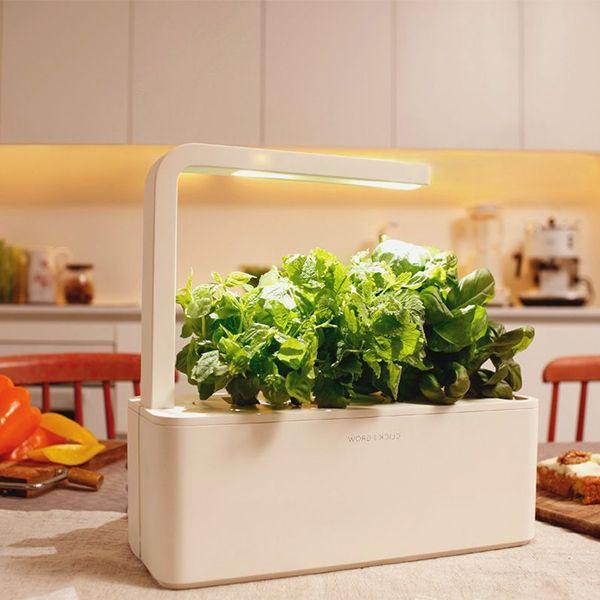 Smart Herb Garden Herb Garden In Kitchen Smart Garden Herb Garden Kit