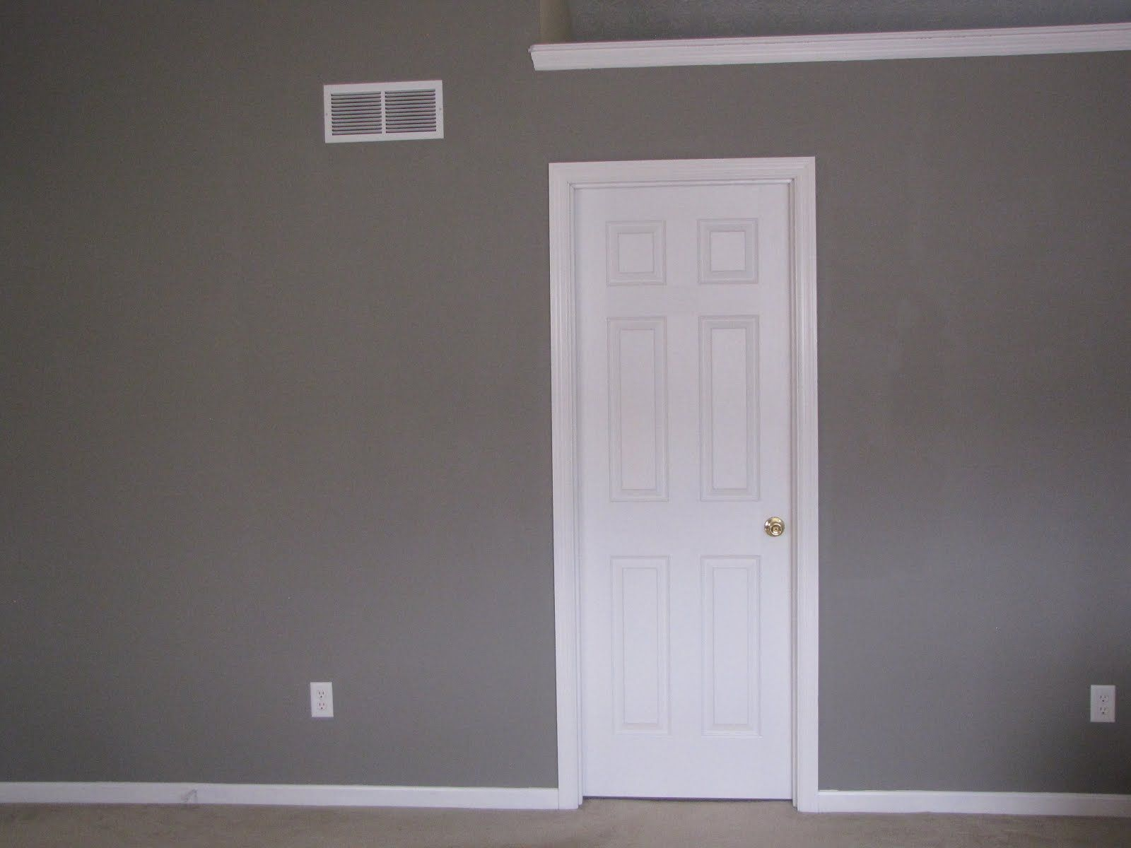 Elephant skin grey on walls Behr paints Home