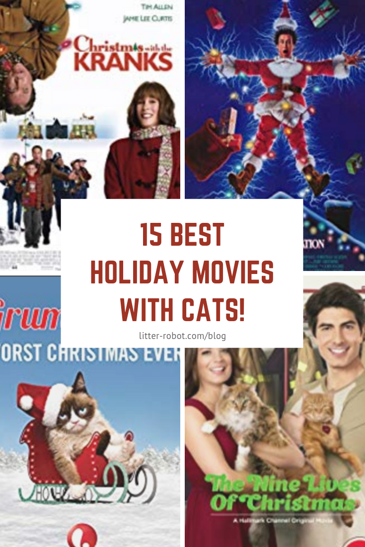 15 Best Holiday Movies with Cats Learn more on Litter