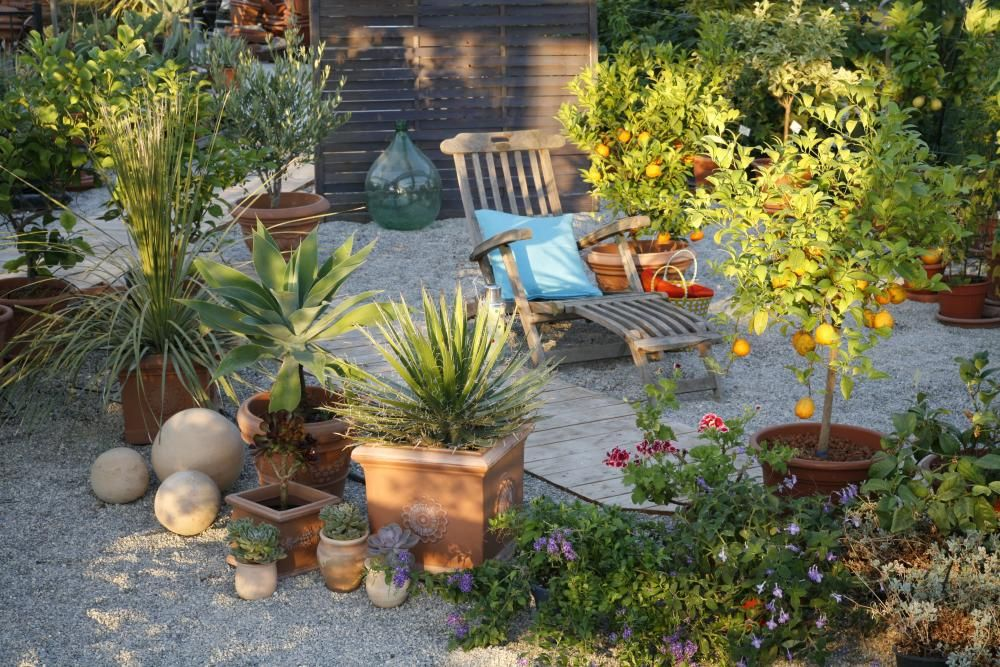 Schoner Garten Ohne Giessen Mediterraner Garten Mediterrane Pflanzen Mediteraner Garten