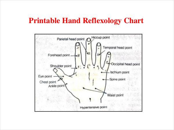 Reflexology Chart Templates   Free Pdf Documents Download