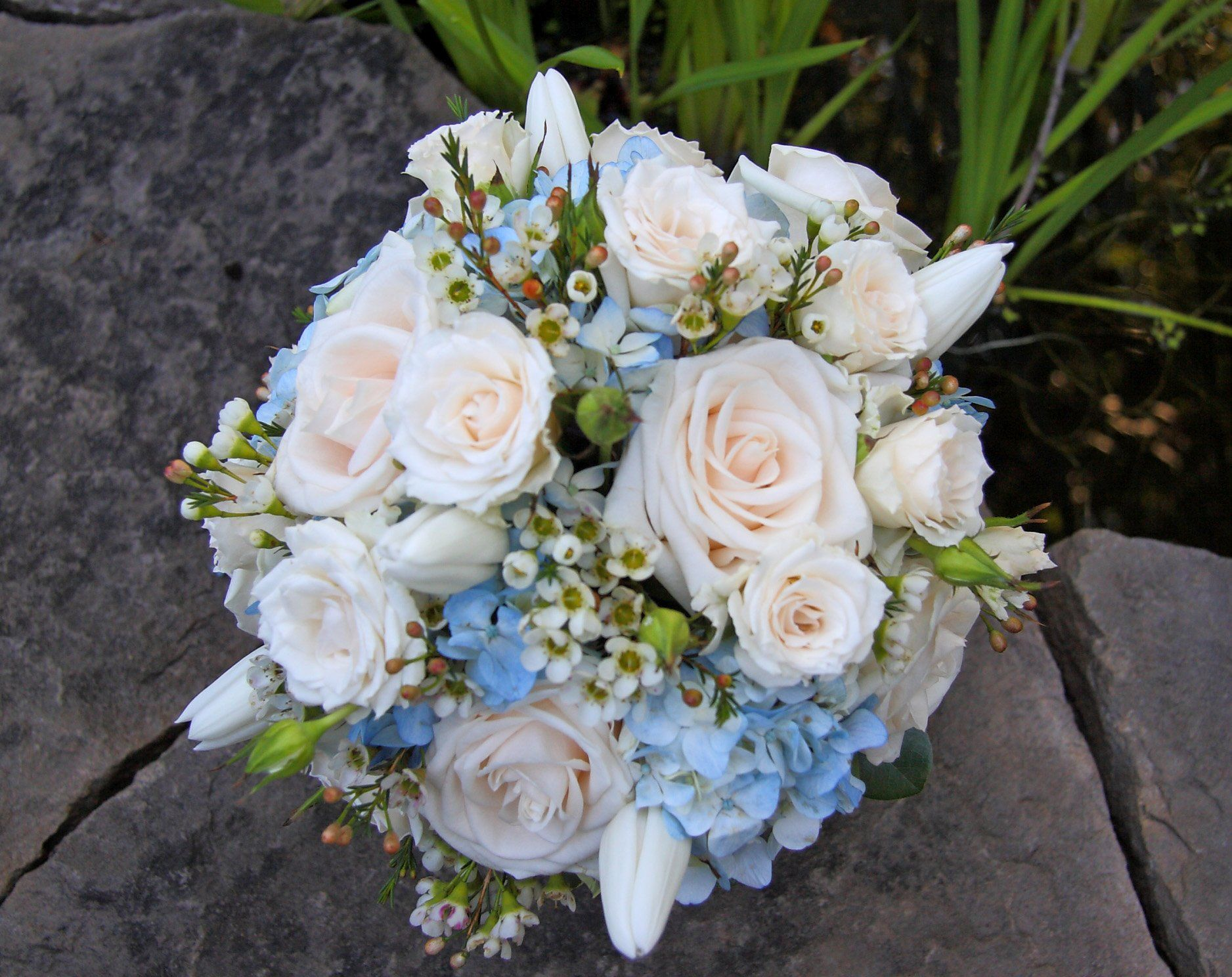 blue and white wedding bouquets garden rose wax flower and blue hydrangea bouquet - Garden Rose And Hydrangea Bouquet