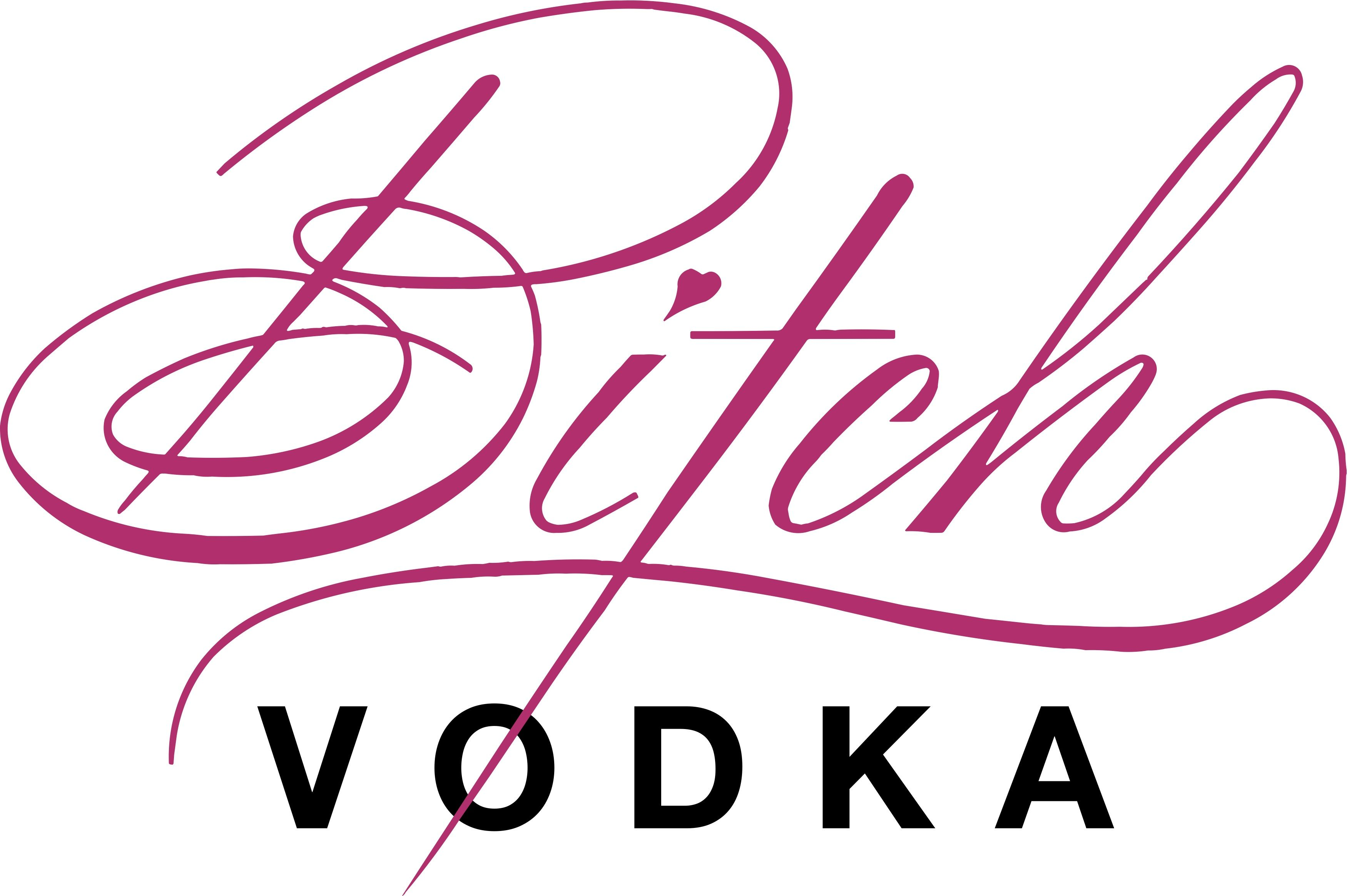 bitch vodka | coming out | pinterest | bartenders