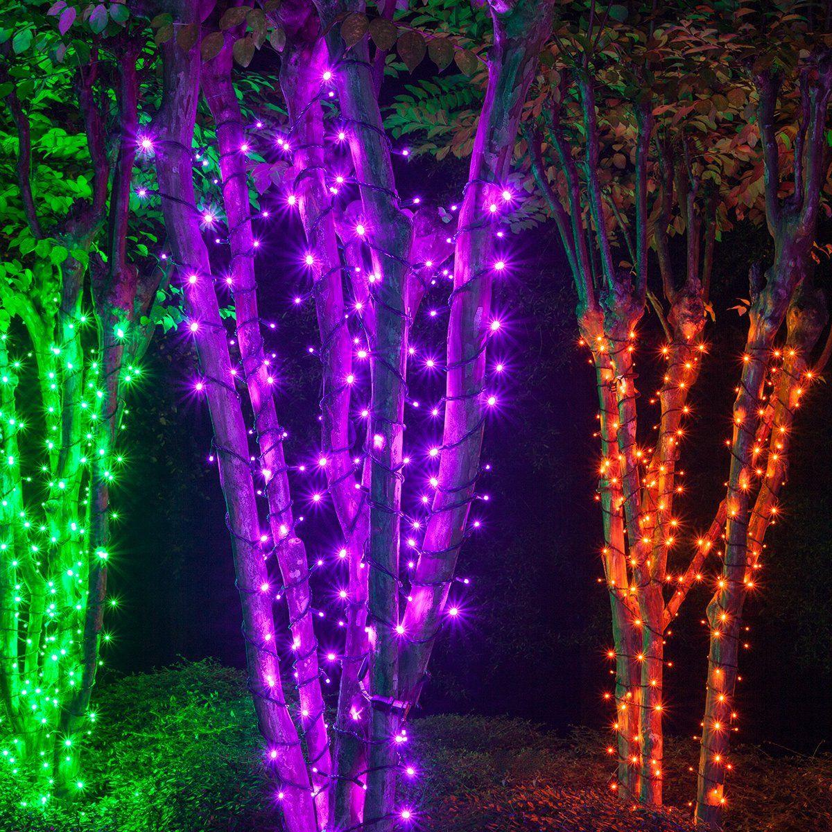 Halloween Do It Yourself Wintergreen Lighting LED