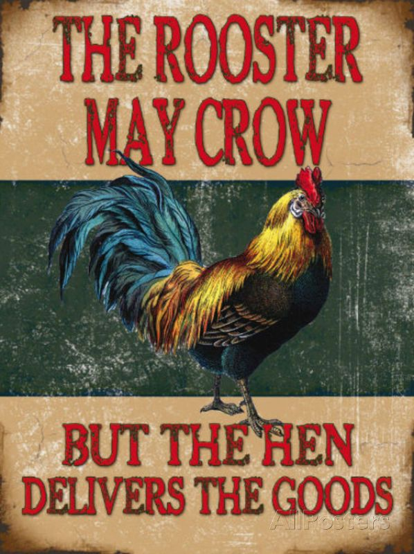 Metal Tin Sign rooster life is good in the coop Decor Bar Pub Home Vintage Retro