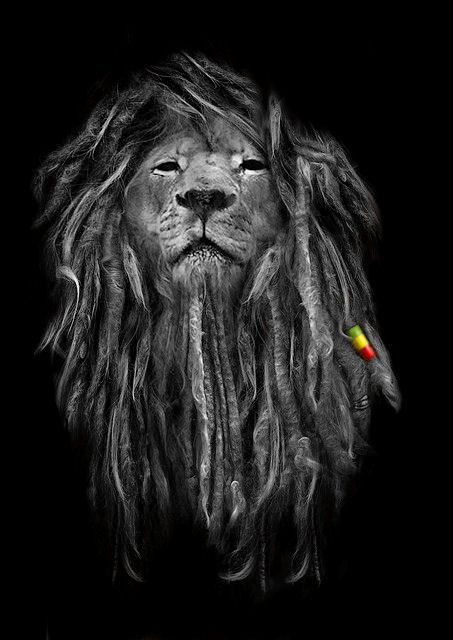 Rasta Lion With Dreads Lion with drea.