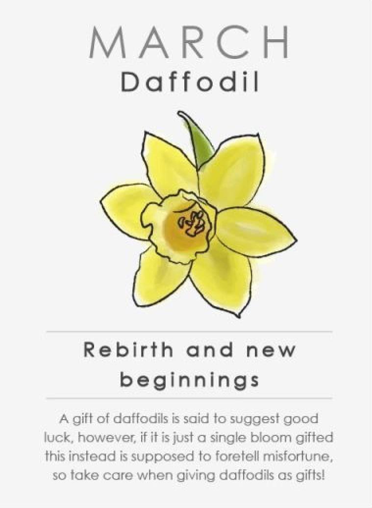 Vegetable Gardening March Birth Flower Daffodils March Birth Flower Daffodils Daffodil Outline In 2020 Birth Flower Tattoos March Birth Flowers Birth Flowers