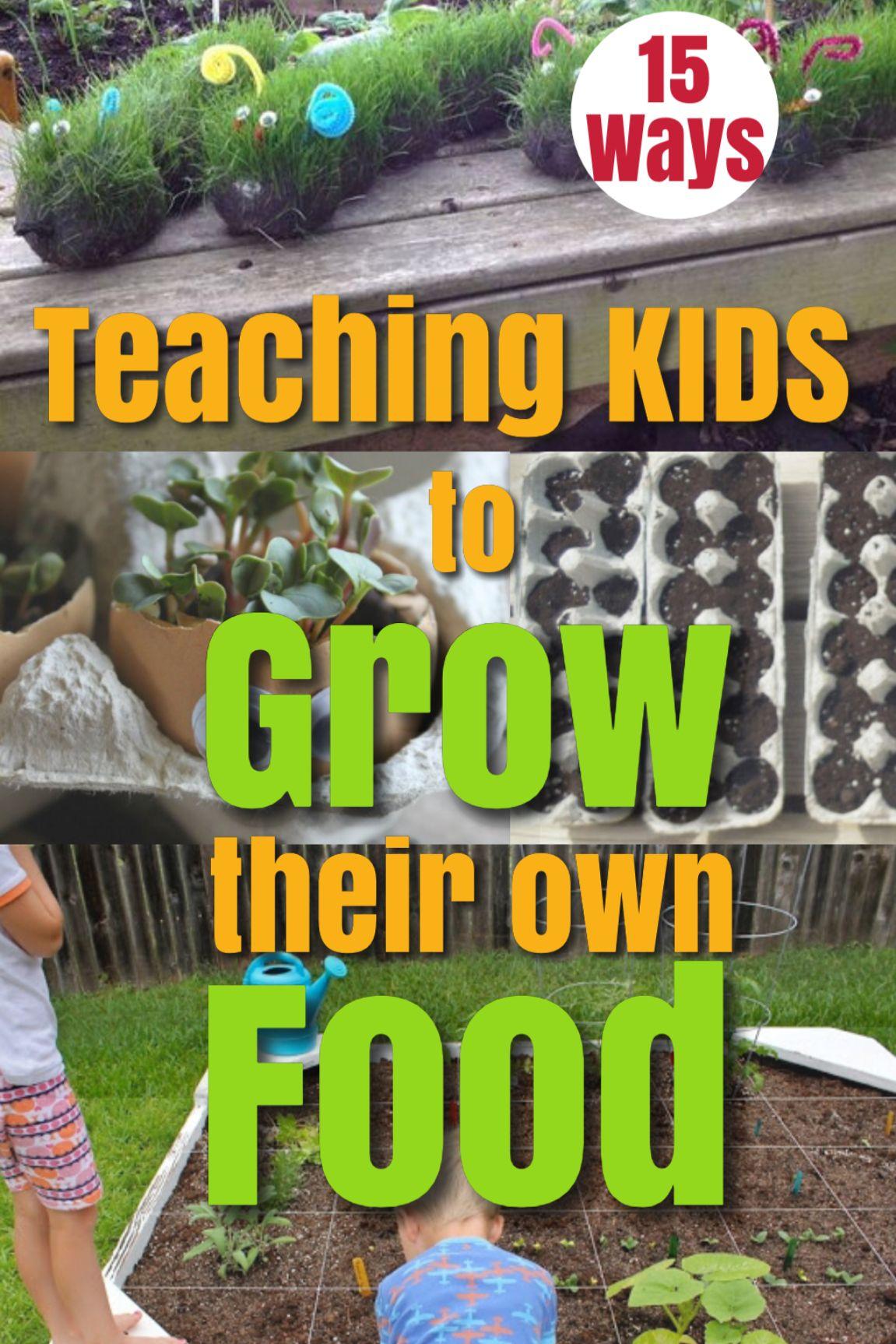 Garden Fun Teaching Kids To Grow Their Own Food