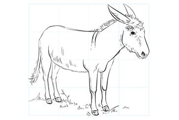 آموزش گام به گام نقاشی حیوانات الاغ Moose Art Animals Art