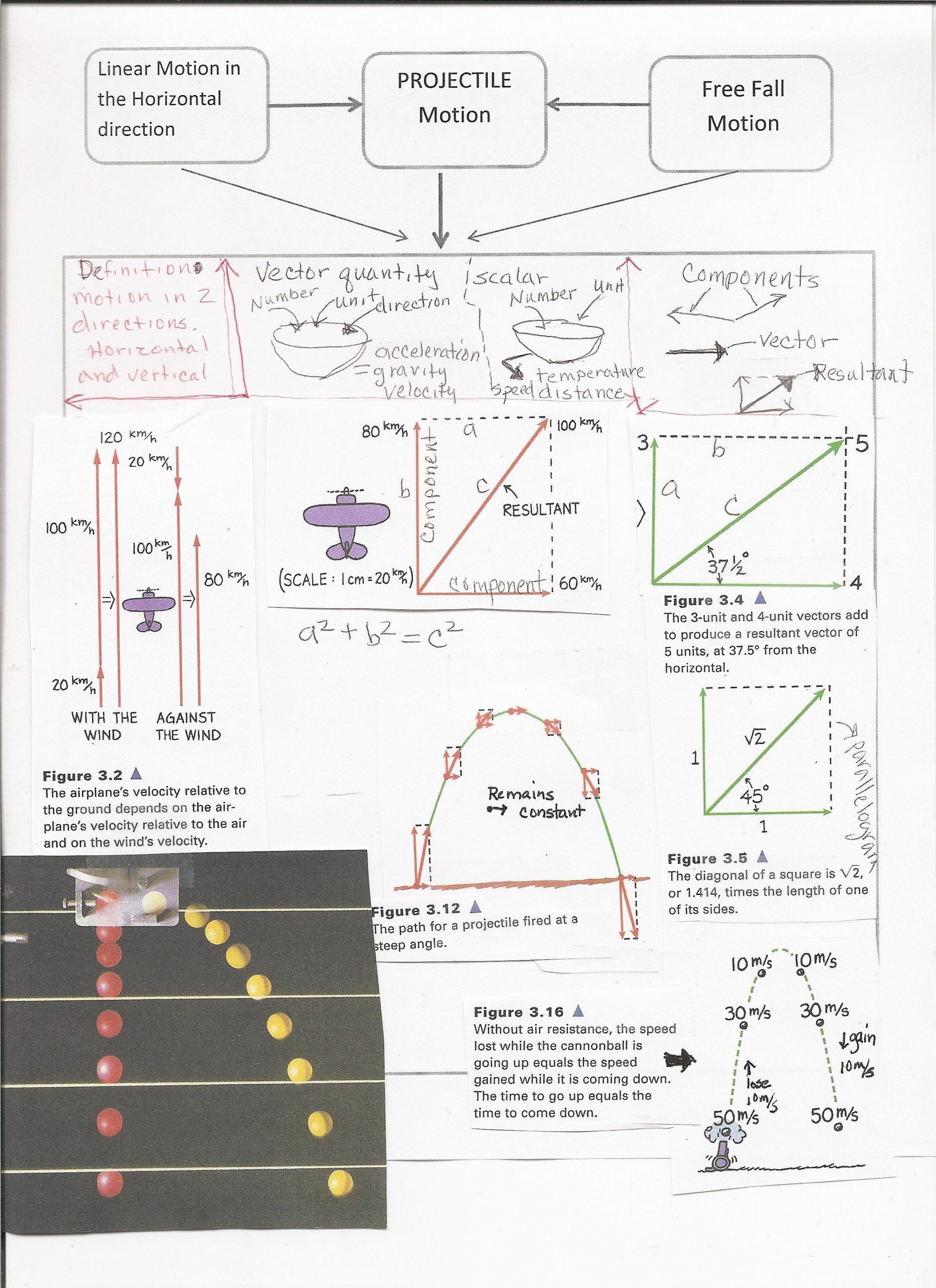 Projectile Motion Worksheet Answers Pin On Physics In 2020 Physics Answers Conceptual Physics Motion Graphs Worksheets