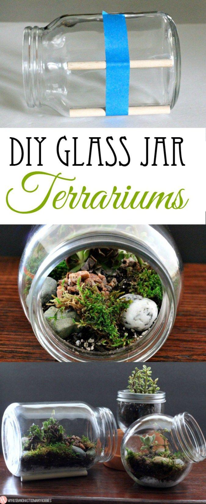 How To Diy Glass Jar Terrariums Pinterest Terraria Jar And Glass