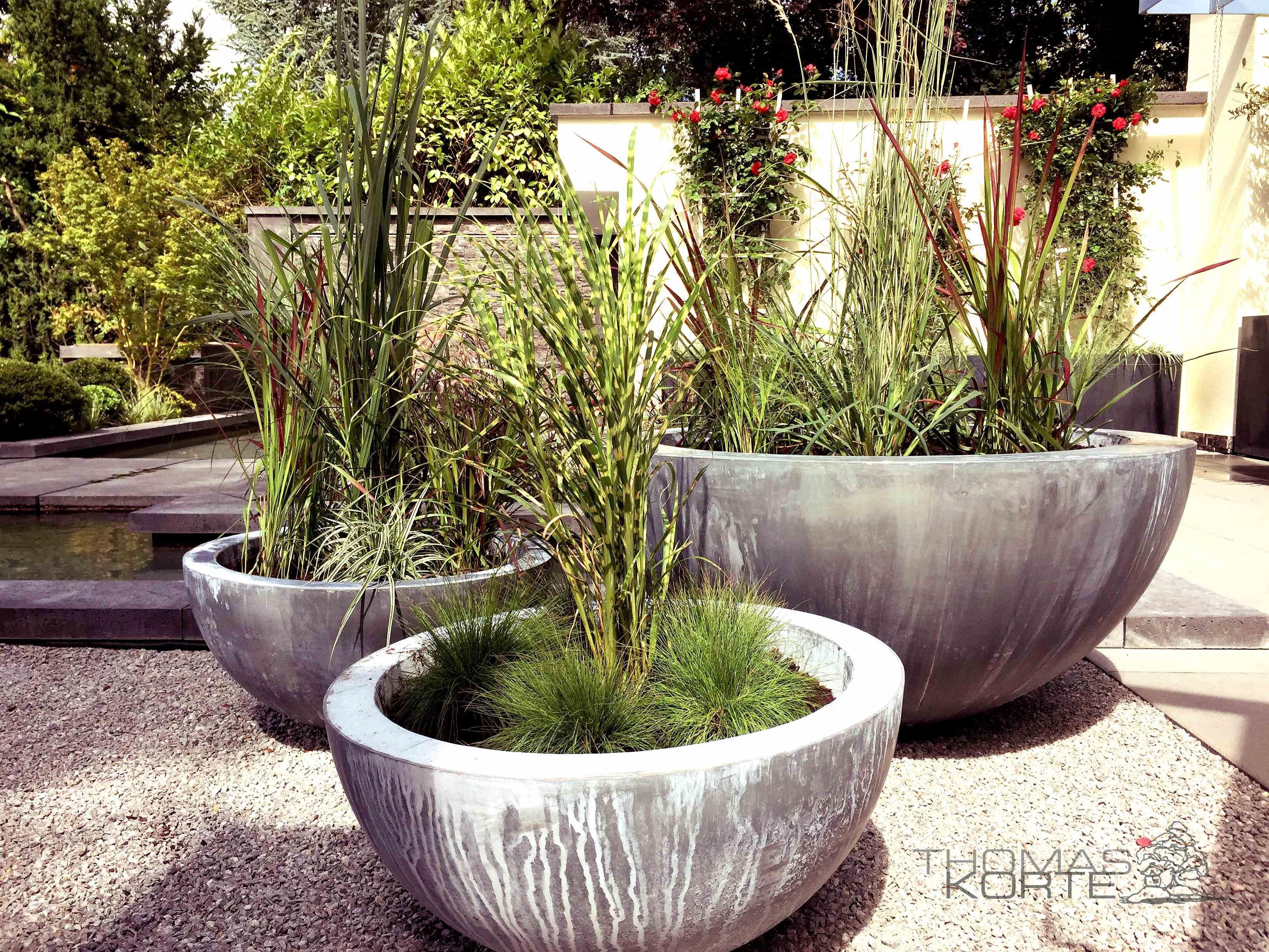 Topfe Domani Zinc Graser Bepflanzung Terrasse Garten