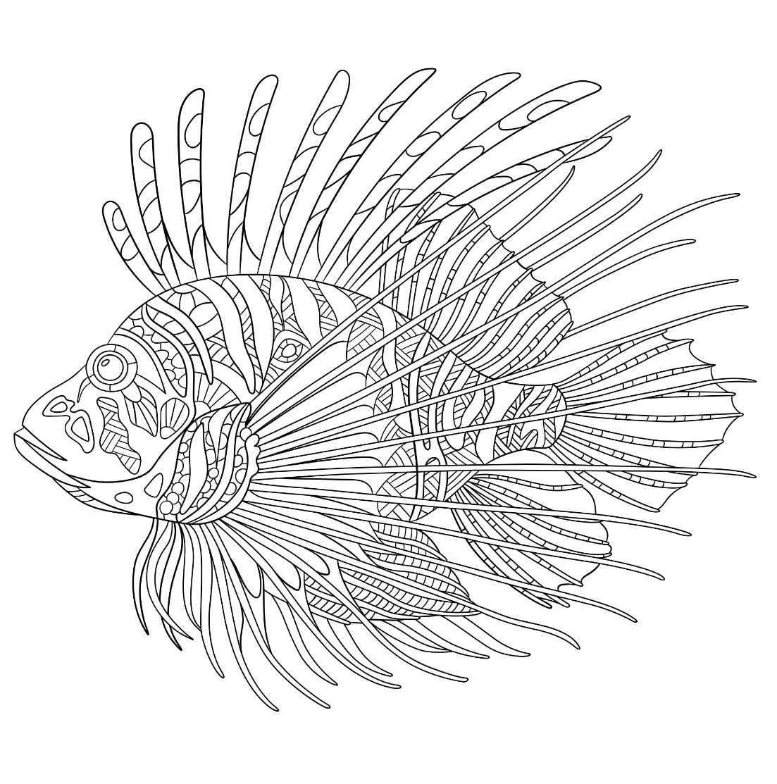 Pin By Ame Martin On Colorea Animales 2 Lion Coloring Pages Lion Fish Animal Coloring Pages