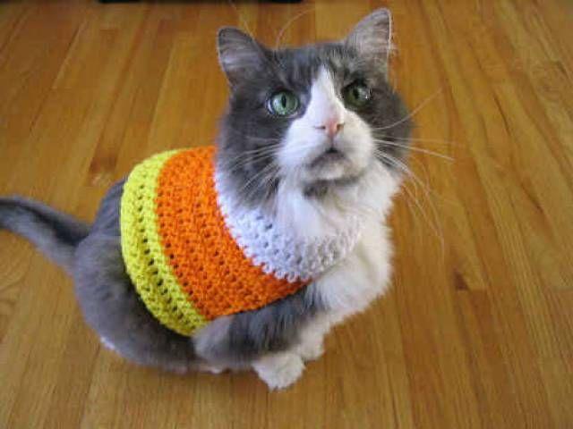 Designer Profile and Free Crochet Patterns: Sarah Zimmerman