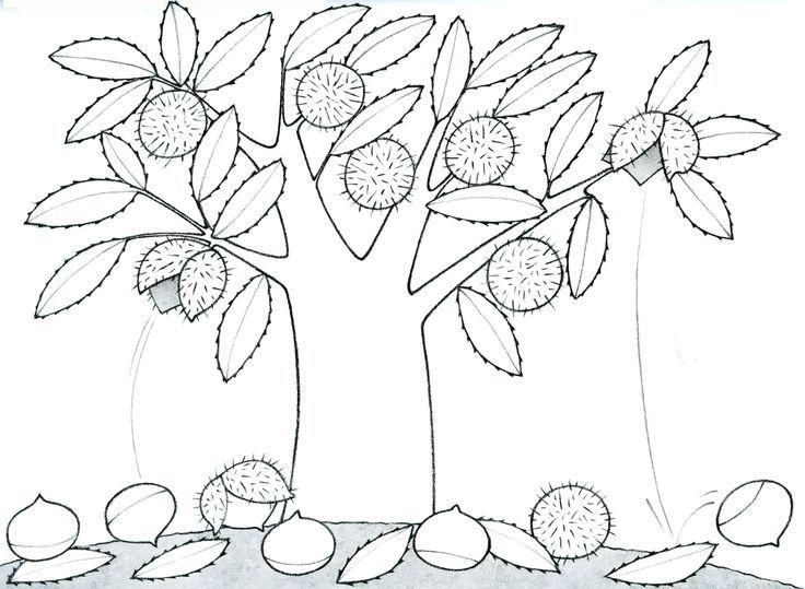 Dibujos De Castanas Para Colorear E Imprimir: Dibujo Para Colorear: El Castaño