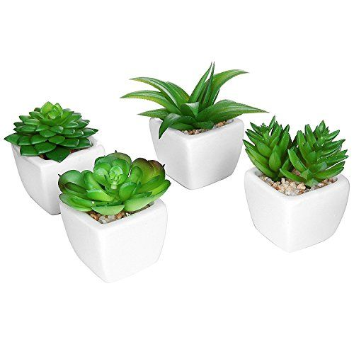 Set of 4 Modern White Ceramic Mini Potted Artificial Succ... https://www.amazon.com/dp/B00VS1SPCA/ref=cm_sw_r_pi_awdb_x_YTa-ybD9FNXJS