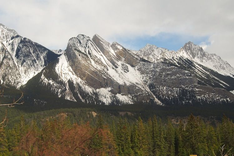Mountain with colorful trees. #Jasper #Canada #viarail