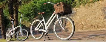 Bicicletta Pieghevole Beixo.Beixo Il Modello Electra High Pieghevole A 7 Marce Nel Mozzo