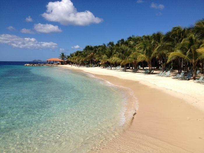 Divi Flamingo Beach Resort Image