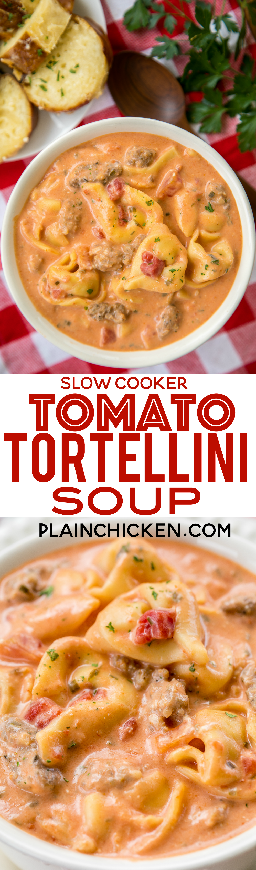 Slow cooker tomato tortellini soup seriously delicious for Delicious slow cooker soup recipes
