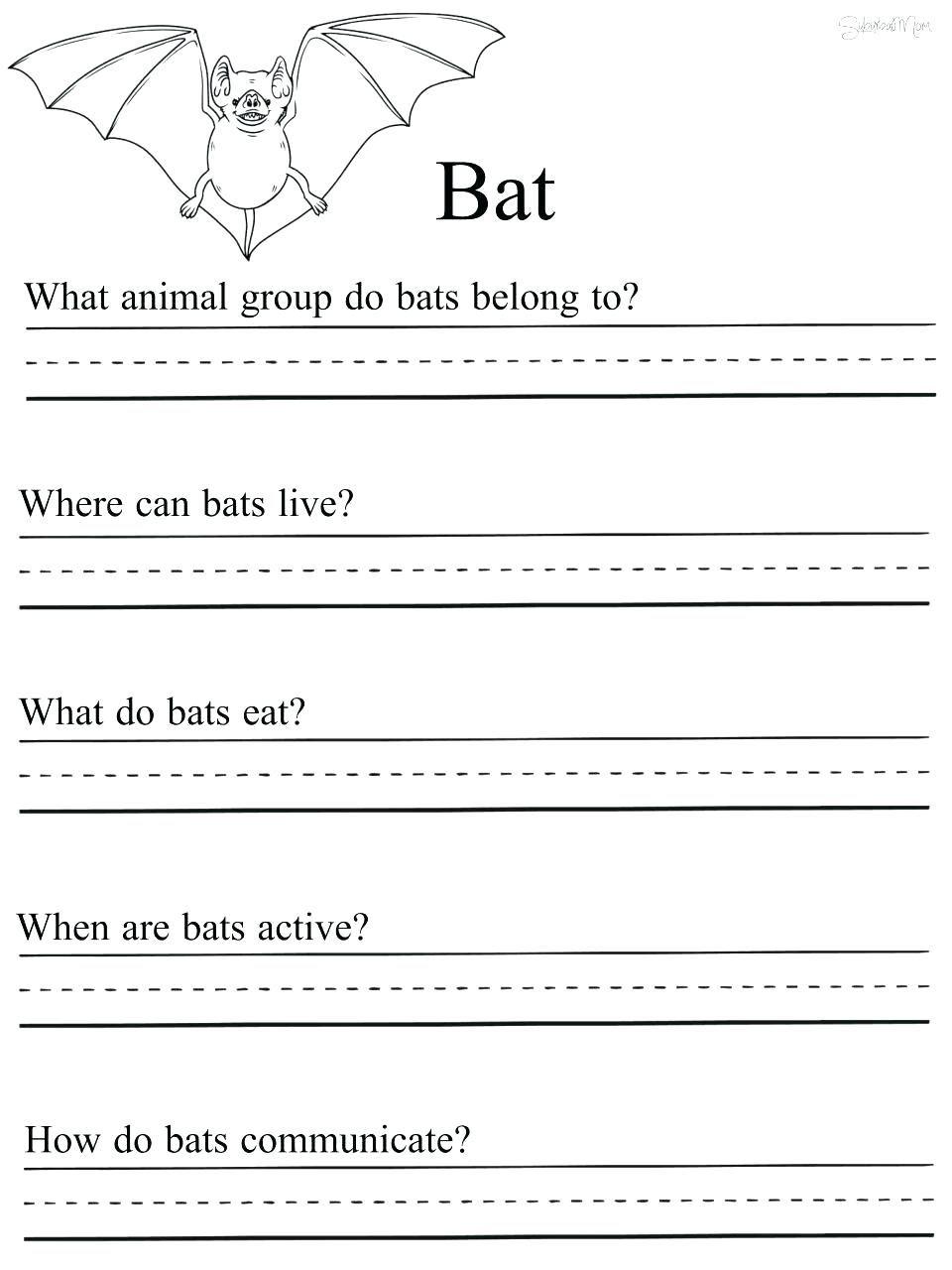 1st Grade Science Worksheets Science Worksheets 1st Grade Science Grade 1