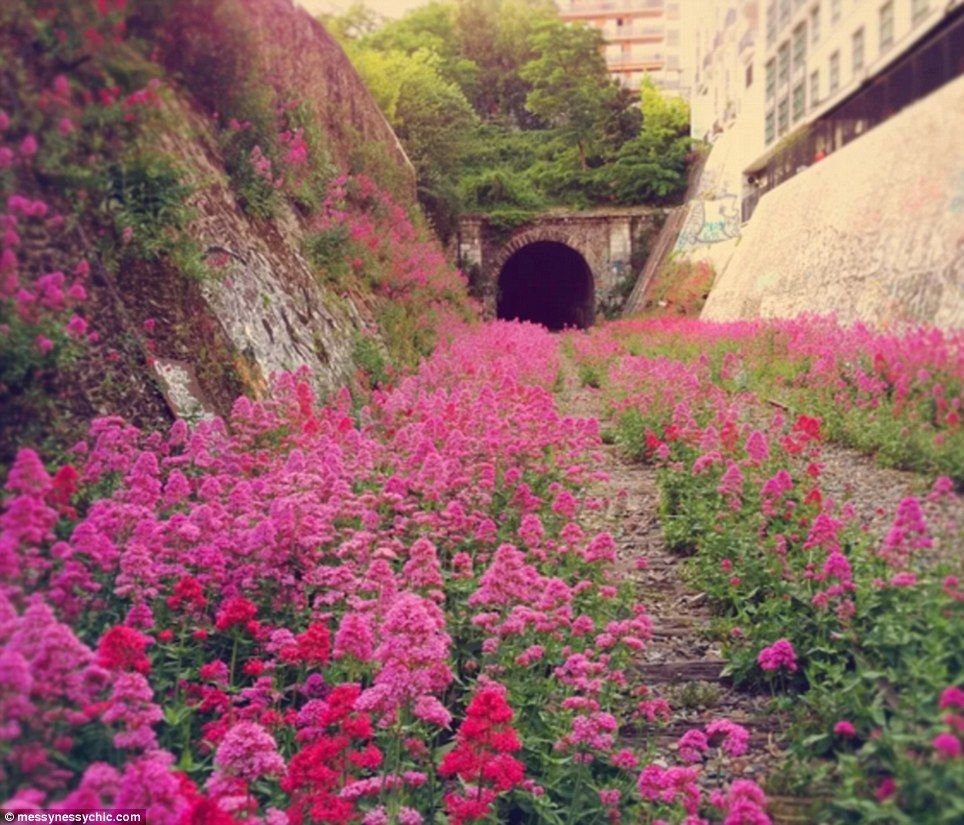 Abandoned Railway Track in France.