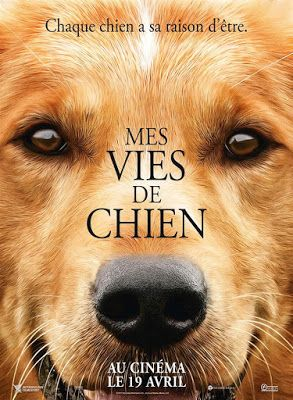 Mes Vies De Chien Streaming : chien, streaming, Chien, Streaming, Complet, Koomstream, Purpose, Movie,, Movies,