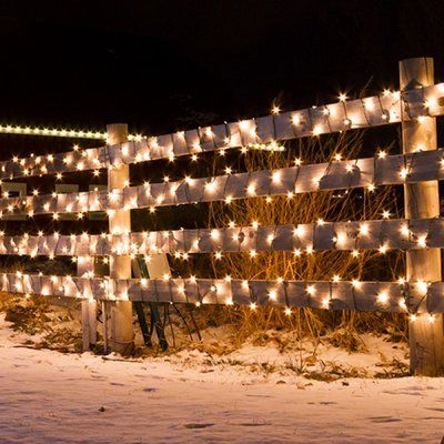 Shop Birch Lane for traditional and farmhouse Holiday Lighting to - solar christmas decorations