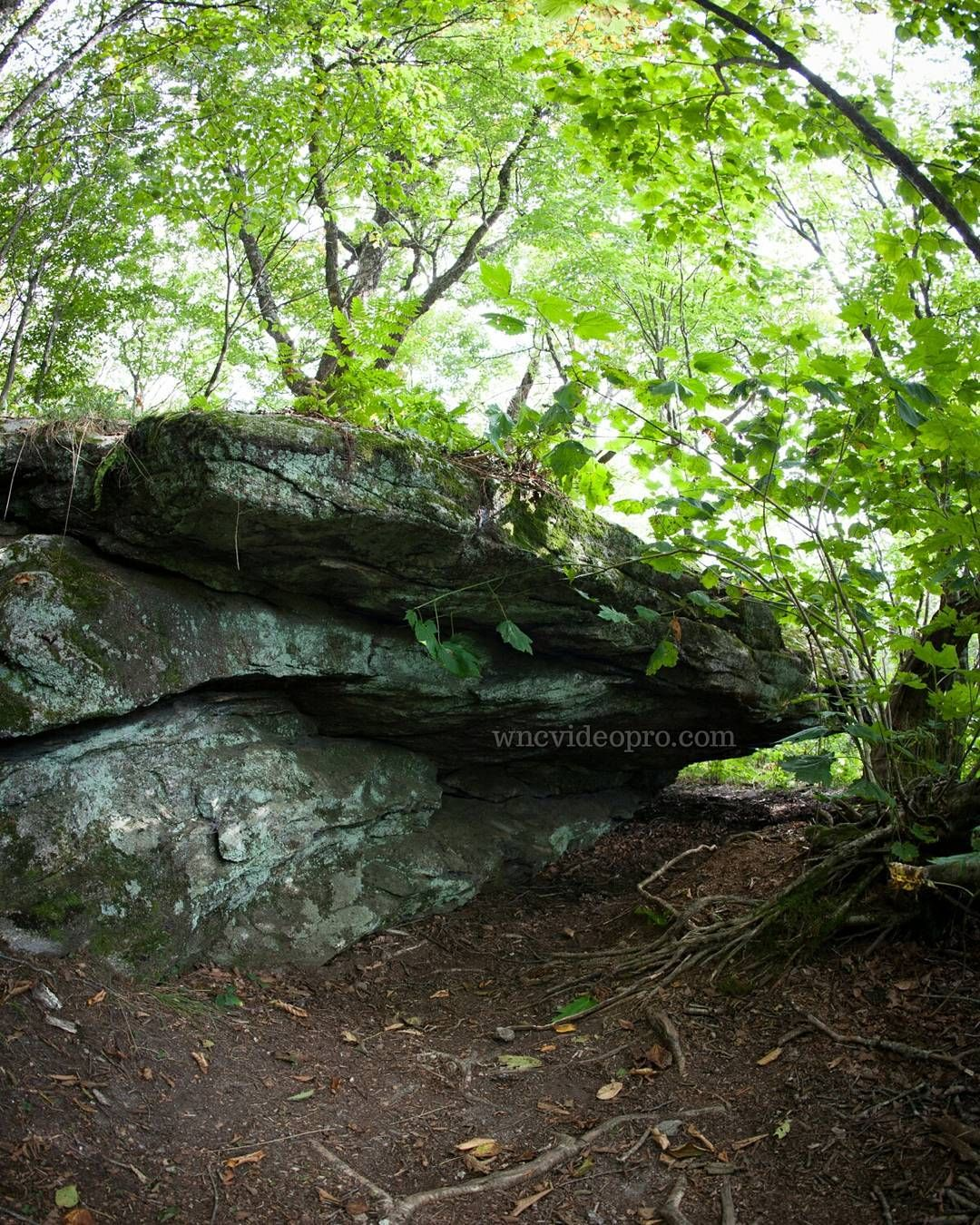 A Small Rock Outcrop Off The Trail At Craggy Gardens Near