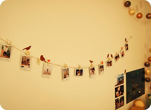 Added wall stickers of birds onto my string of polaroids