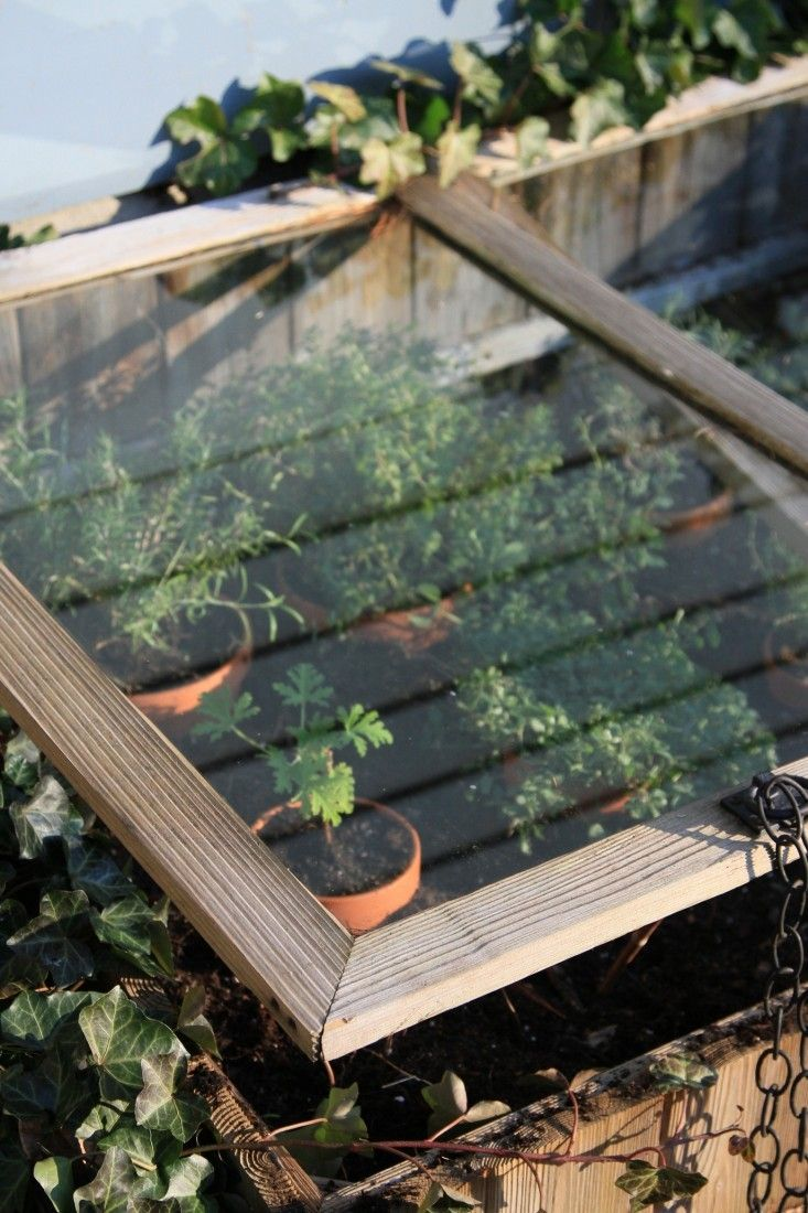 DIY: Reviving the Cold Frame | Cold frames and Gardens