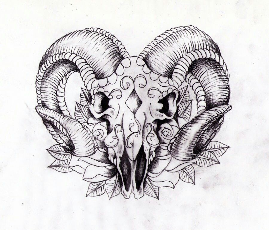 9e6ee618a Aries skull | tattoos | Tattoos, Symbolic tattoos, Tattoo sketches