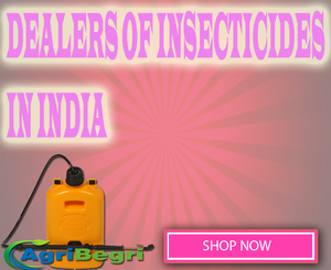 Purchase Cheap Insecticides Online In India  Low Priced Insecticides Best Sell In Insecticides Buy Cheap Insecticides Product Discount on Insecticides Product Free Home Delivery For Insecticides Product