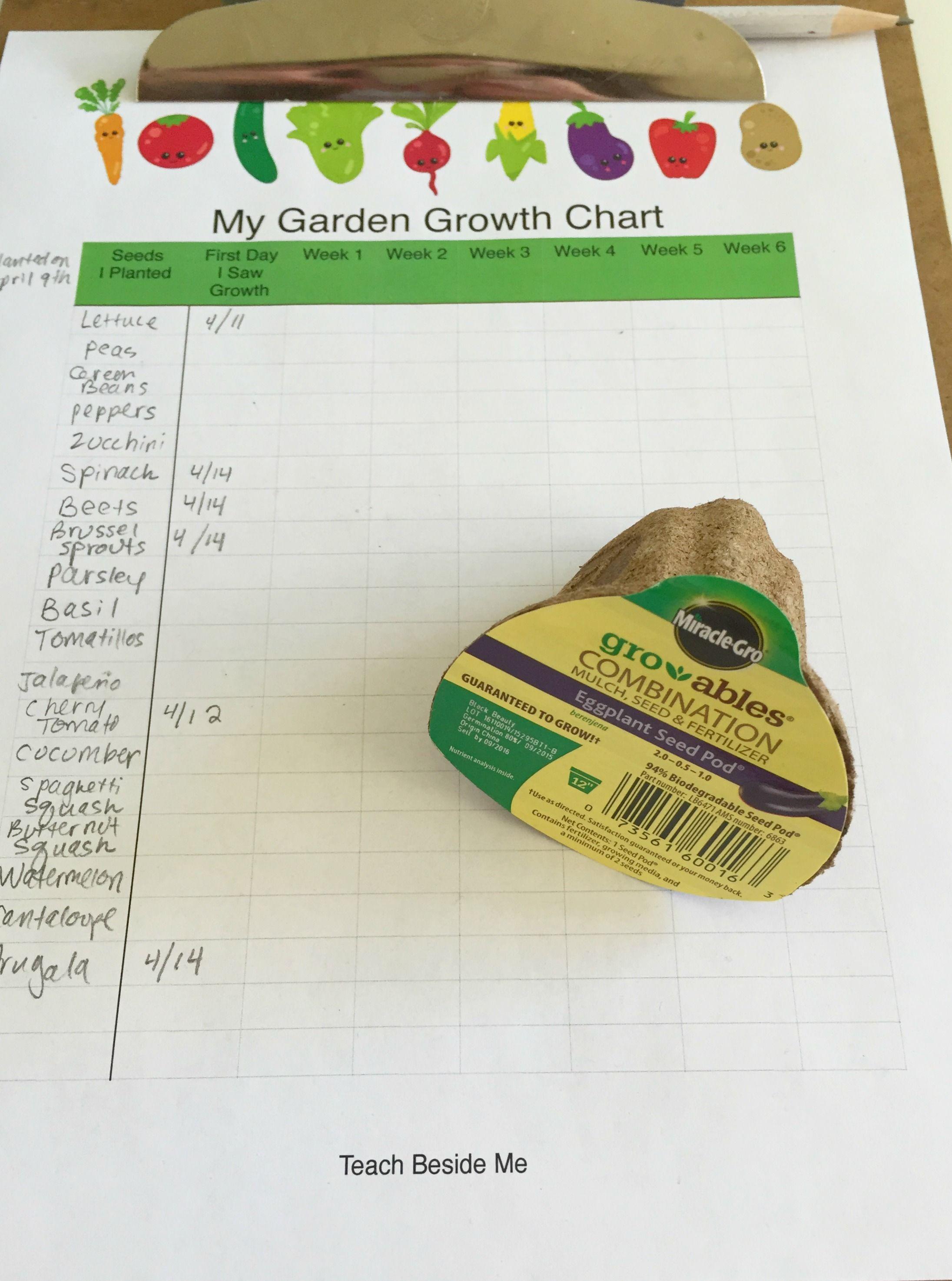 Kids Gardening Math Growth Amp Measurement