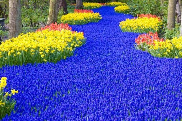 Charmant 100 Gartengestaltung Bilder Und Inspiriеrende Ideen Für Ihren Garten