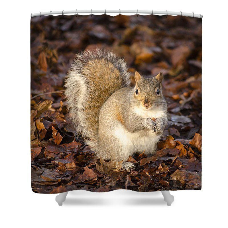 A Shower Curtain Made From 100 Polyester Fabric And Includes 12 Holes In The Top Of For Simple Hanging Your Own Rings