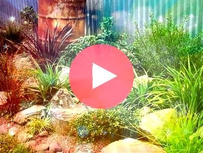 garden for a great turtle garden  My Cotta  Cottage Garden Pond Rock garden for a great turtle garden  My Cotta  Cottage Garden Pond  Landscaping Ideas for the Front Yard...