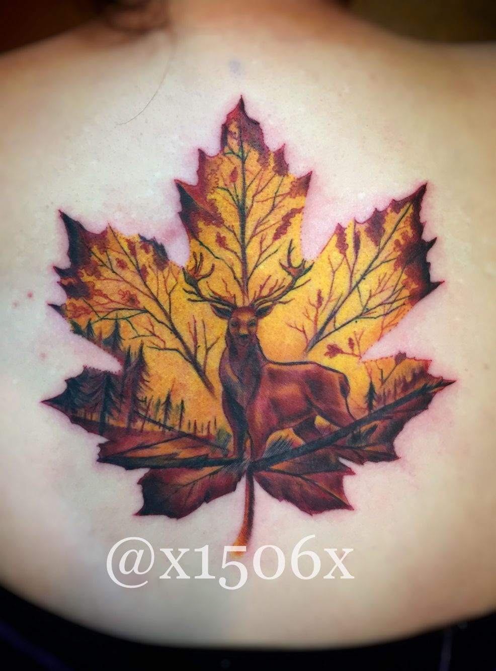 Happy Canada Day Fun Piece I Got To Do My Way Yesterday Based Off An Eagle And Rabbits In Maple Leaf Tattoo That S Tattoos Autumn Tattoo Fall Leaves Tattoo