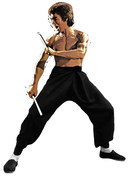 Bruce Lee Png Image