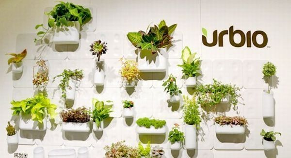 Grow plants on walls of your house with Urbio   Designbuzz : Design ideas and concepts